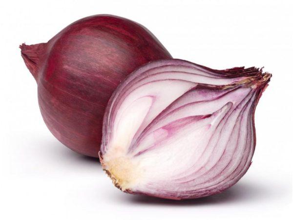cebolla roja goilurra